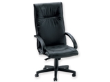 Show details for  SALISBURGO EXECUTIVE CHAIR - leather - swivel 1pcs