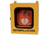 Show details for CABINET WITH THERMO AND ALARM FOR DEFIBRILLATORS - outdoor use