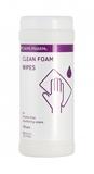 Показать информацию о CLEAN FOAM WIPES N100